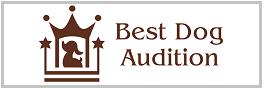 Best Dog Audition